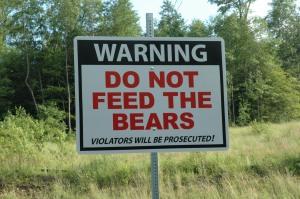 bearsign